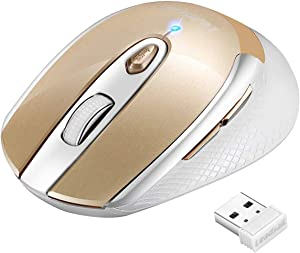 LeadsaiL Wireless Computer Mouse, 2.4G Portable Slim Cordless Mouse Less Noise for Laptop Optical Mouse with 6 Buttons, AA Battery Included, USB Mouse for Laptop, Deskbtop, MacBook (Gold)