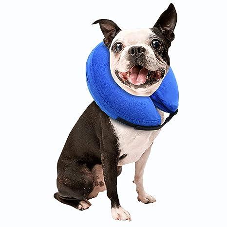 Amazon.com: E-KONG Collar de perro protector ajustable gatos ...