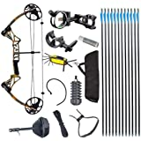 TOPOINT M1 15-70LB COMPOUND BOW & ARROW HUNTING TARGET ARCHERY CNC DUAL CAM