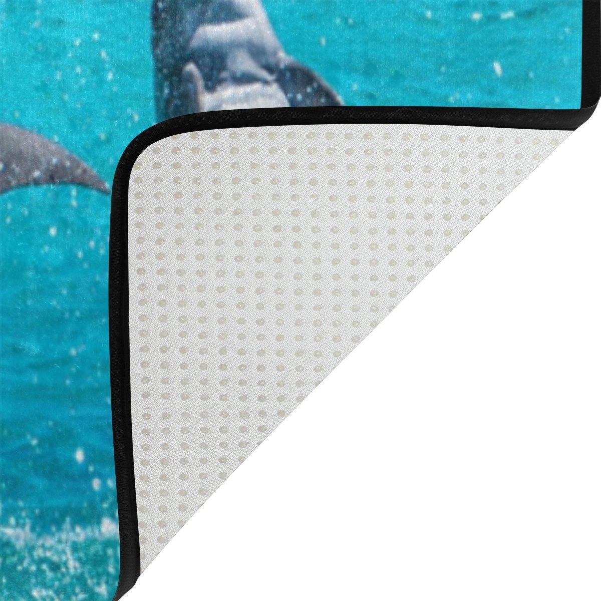 Amazon.com: lorvies Jumping Dolphin área alfombra alfombra ...
