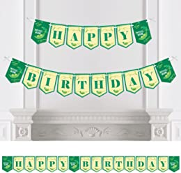 Big Dot of Happiness Double The Fun - Twins Two Peas in a Pod - First Birthday Party Bunting Banner - Birthday Party Decorations - Happy Birthday