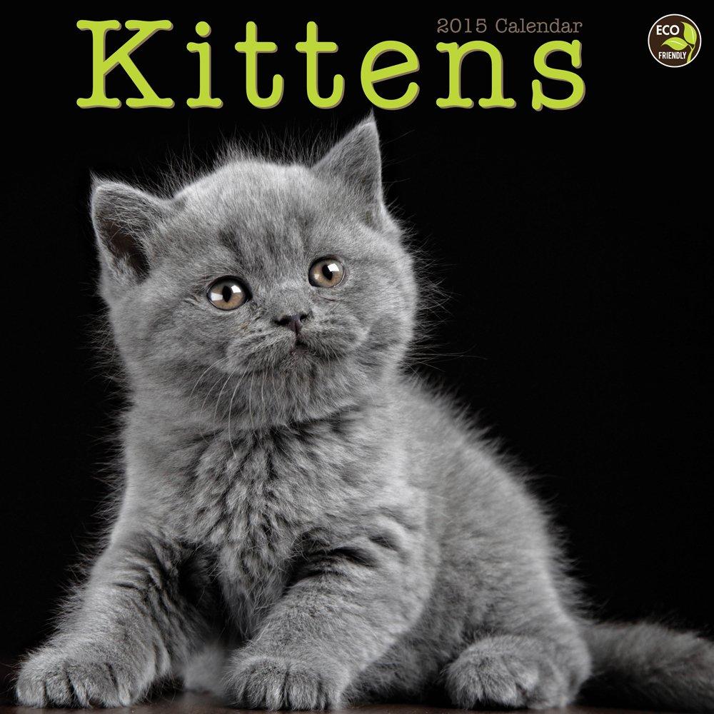 2015 Kittens Wall Calendar PDF Text fb2 book