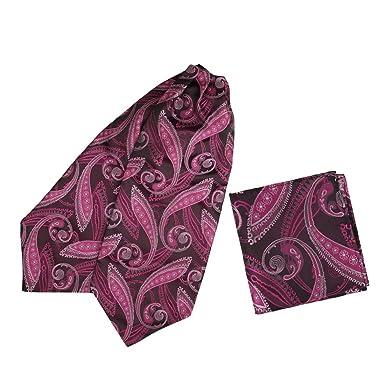 Epoint - Juego de corbata de microfibra para hombre, diseño ...