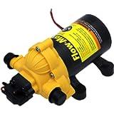 Lippert Components 12V Flow Max Water Pump (689052)