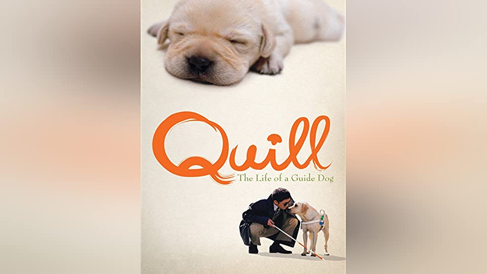 Quill: The Life of a Guide Dog (English Subtitled)