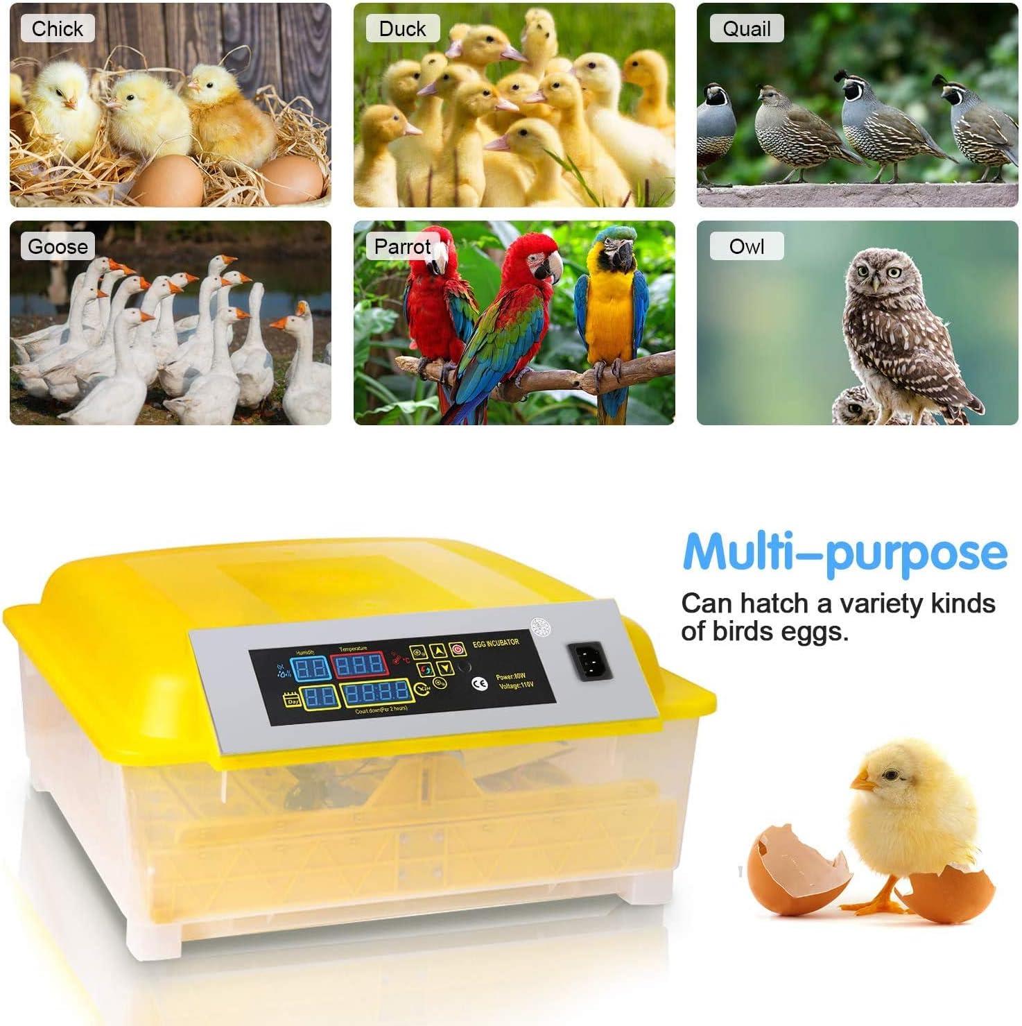 Oppikle 48//56 Eier Intelligentes digitales Brutmaschine Brutkasten mit LED Temperaturanzeige und Feuchtigkeitsregulierung,Inkubator Vollautomatische Brutmaschine