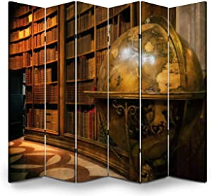 APED DECOR Wood Screen Room Divider Vienna, Austrian National Library Folding Screen Canvas Privacy Partition Panels Dual-Sided Wall Divider Indoor Display Shelves 6 Panels