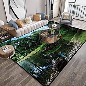 "Japanese Area Carpets for Living Room 5'2""X7'2"" Feet,Lake Red Bridge in Gardens Trees Natural Paradise Theme Loneliness in Nature,Luxury Large Floor Carpet with Lock-Edge & Non-Slip Base,Green Blue"