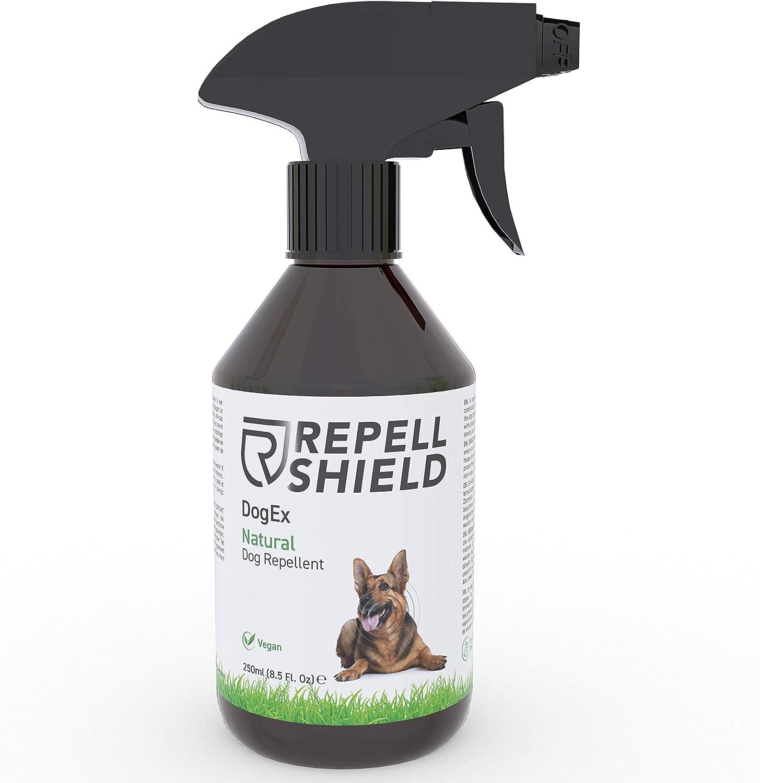 Repell Shield Spray Repelente para Perros - Ahuyentador de Perros Natural - Spray Antimordeduras Perros para Exteriores e Interiores, Eficacia Duradera - Pipi Stop con Fragancia de Hierbabuena, 250ml
