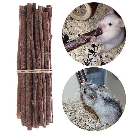 Pet Hamster rata Gerbil chinchillas ardilla de Guinea Pig Conejo ...