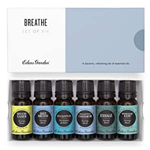 Edens Garden Breathe Essential Oil 6 Set, Best 100% Pure Aromatherapy Respiratory Kit (For Diffuser- Cold Flu & Congestion), 10 ml