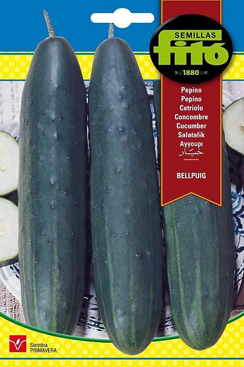 Semillas Fitó 237 - Semillas de Pepino Bellpuig: Amazon.es: Jardín