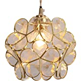 Bieye L10744 Flower Petals Tiffany Style Stained Glass Ceiling Pendant Light with 8-inch Wide Lampshade (Transparent…