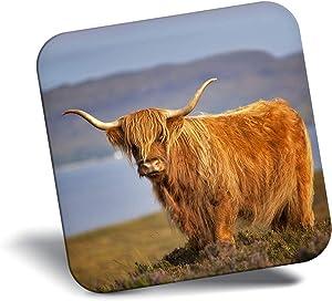 Destination Vinyl ltd Awesome Fridge Magnet - Brown Fluffy Highland Scottish Cow 16327