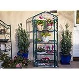 Serre de jardin, balcon, terrasse – Structure acier vert housse PVC transparente imperméable – Mini serre transportable 4 étagères L69*P49*H158 cm – Interouge