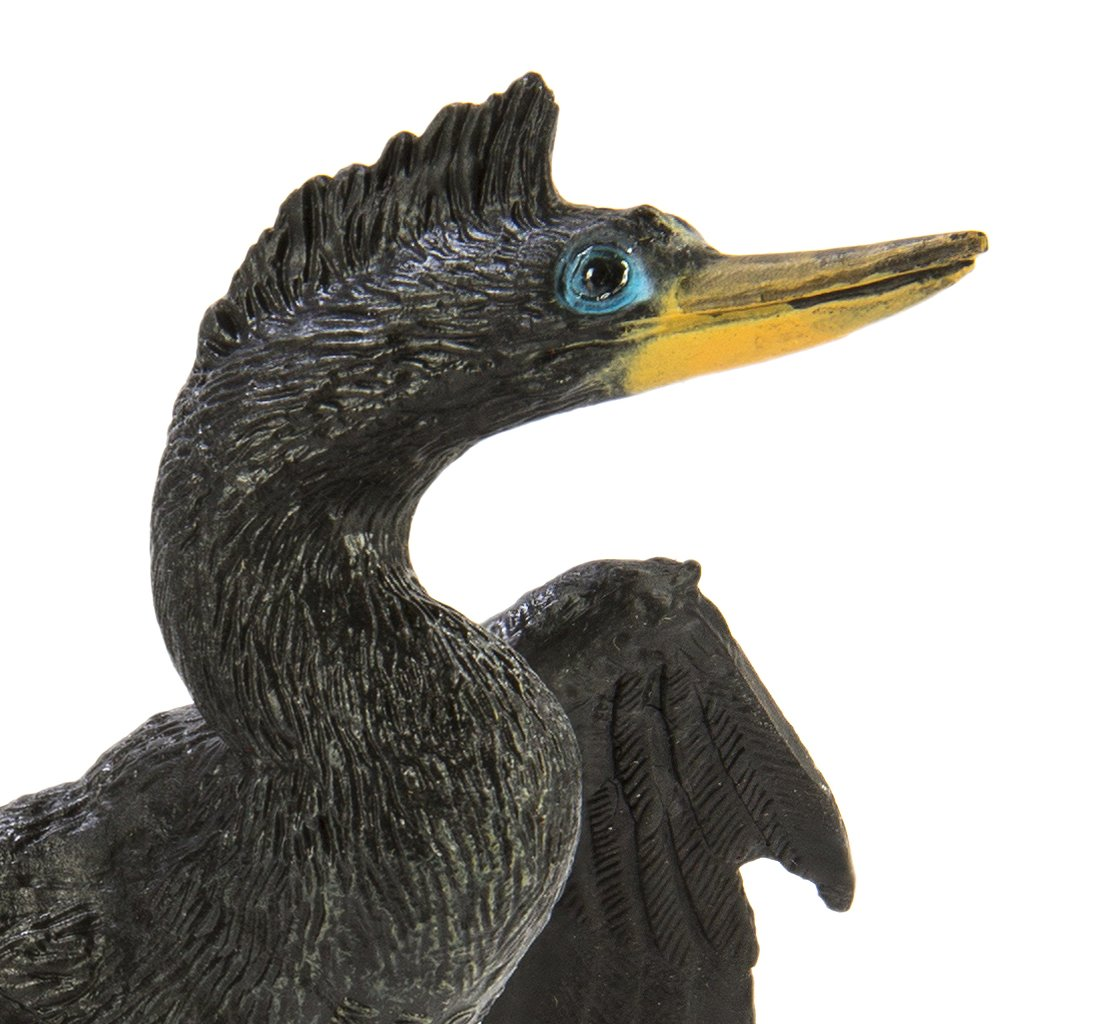 Quality Construction from Safe and BPA Free Materials Realistic Hand Painted Toy Figurine Model Safari Ltd For Ages 3 and Up S150129 Wings of the World Anhinga