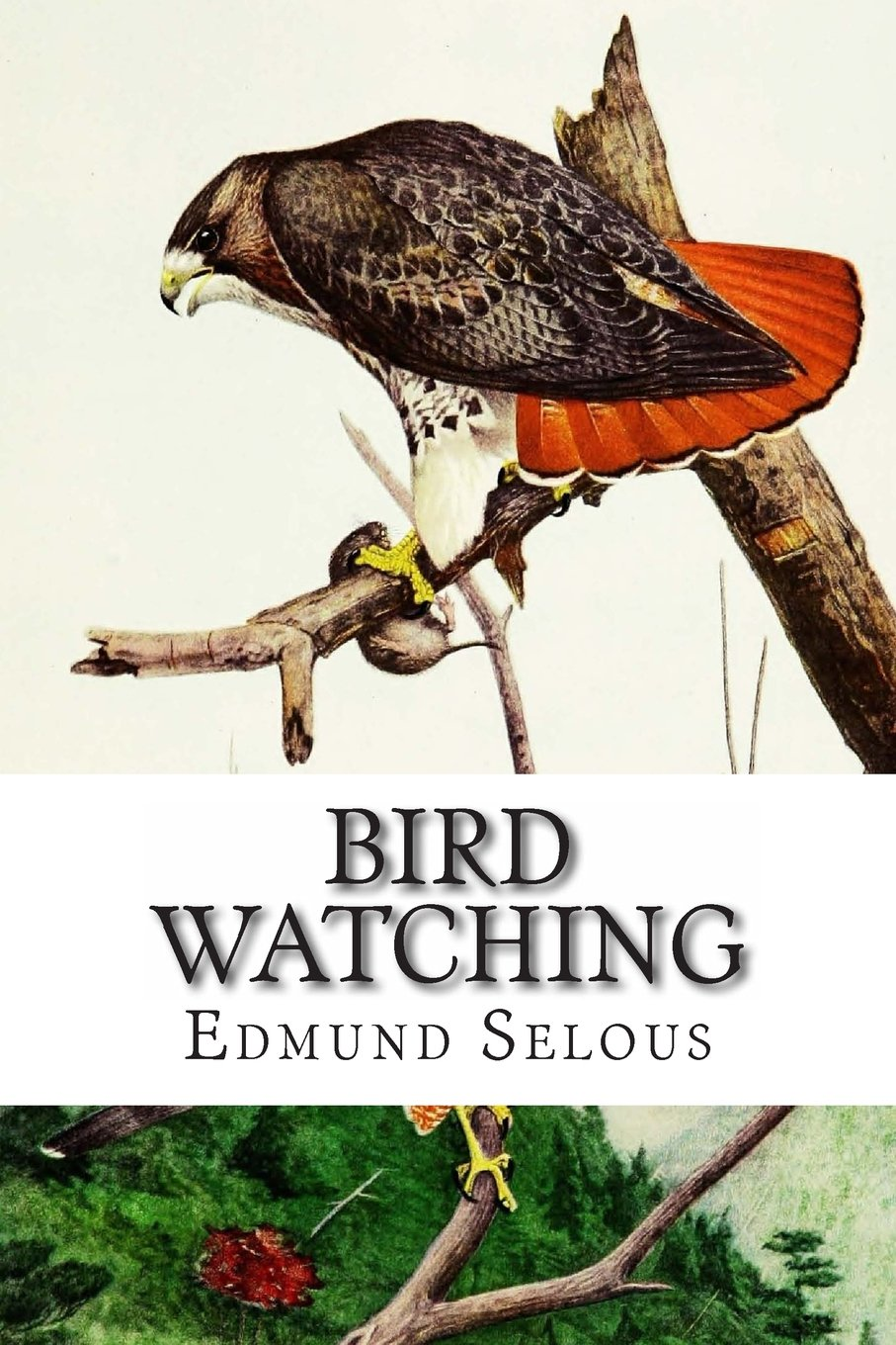 Bird Watching pdf epub