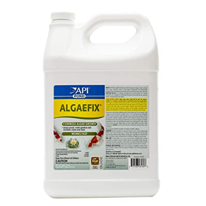 Api Algaefix Algae Control Solution 4-ounce Bottle Water Tests & Treatment Fish & Aquariums