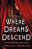 Where Dreams Descend: A Novel