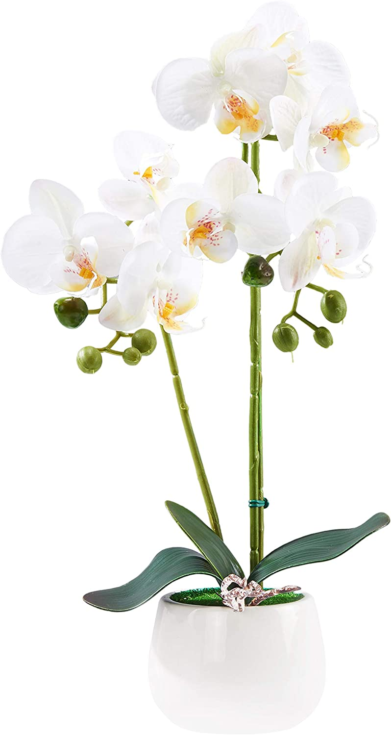 KINBEDY Artificial Bonsai Silk Orchids Phalaenopsis with Ceramic Vase Home Office Decoration Party Wedding Decor White.