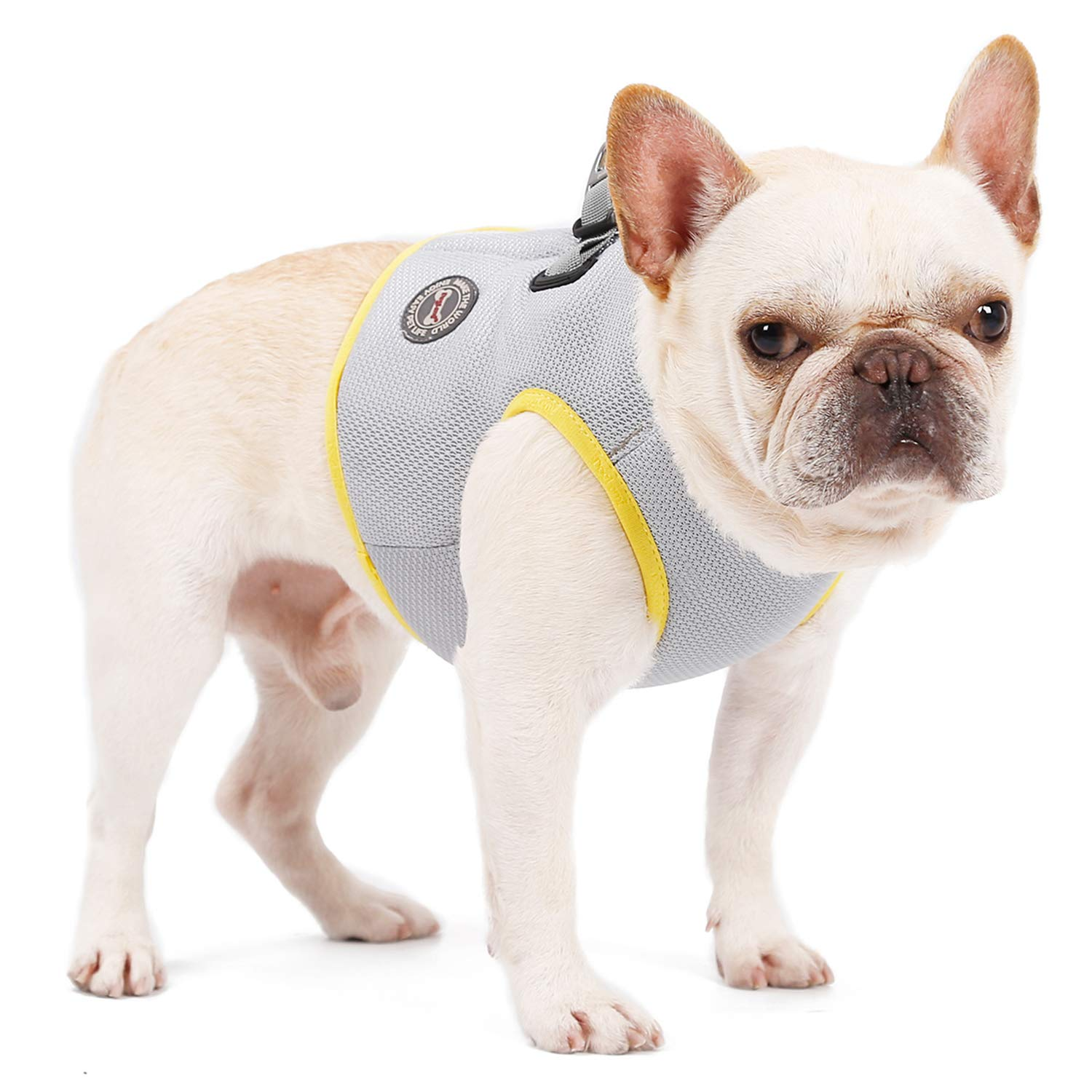 CONTACTS Dog Cooling Vest Harness Outdoor Breathable Pet Cooling Coat Sun-Proof Dog Jacket, Suitable for Medium and Large Dogs, 2X-Large by CONTACTS