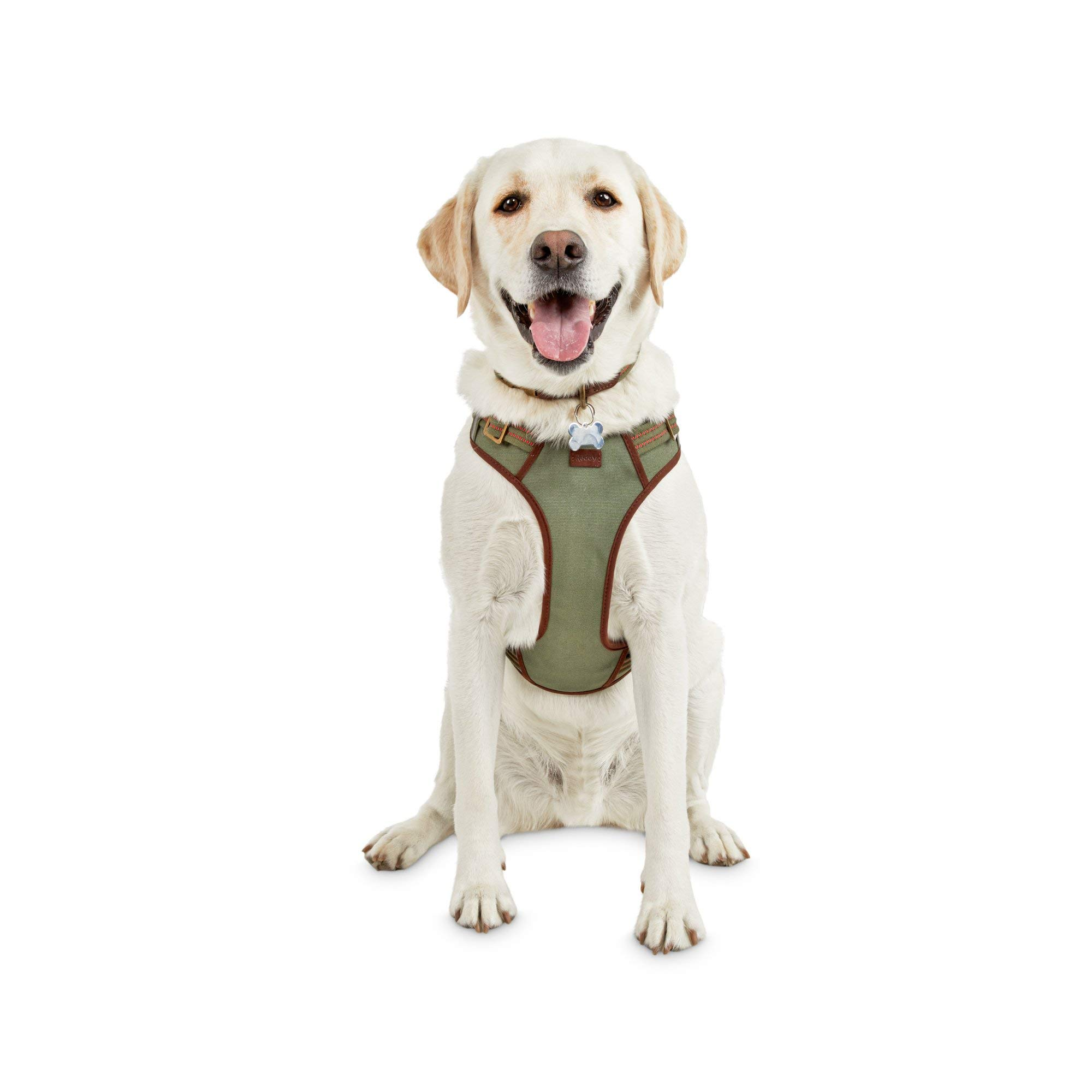 Reddy Green Dog Harness, XX-Large/3X-Large