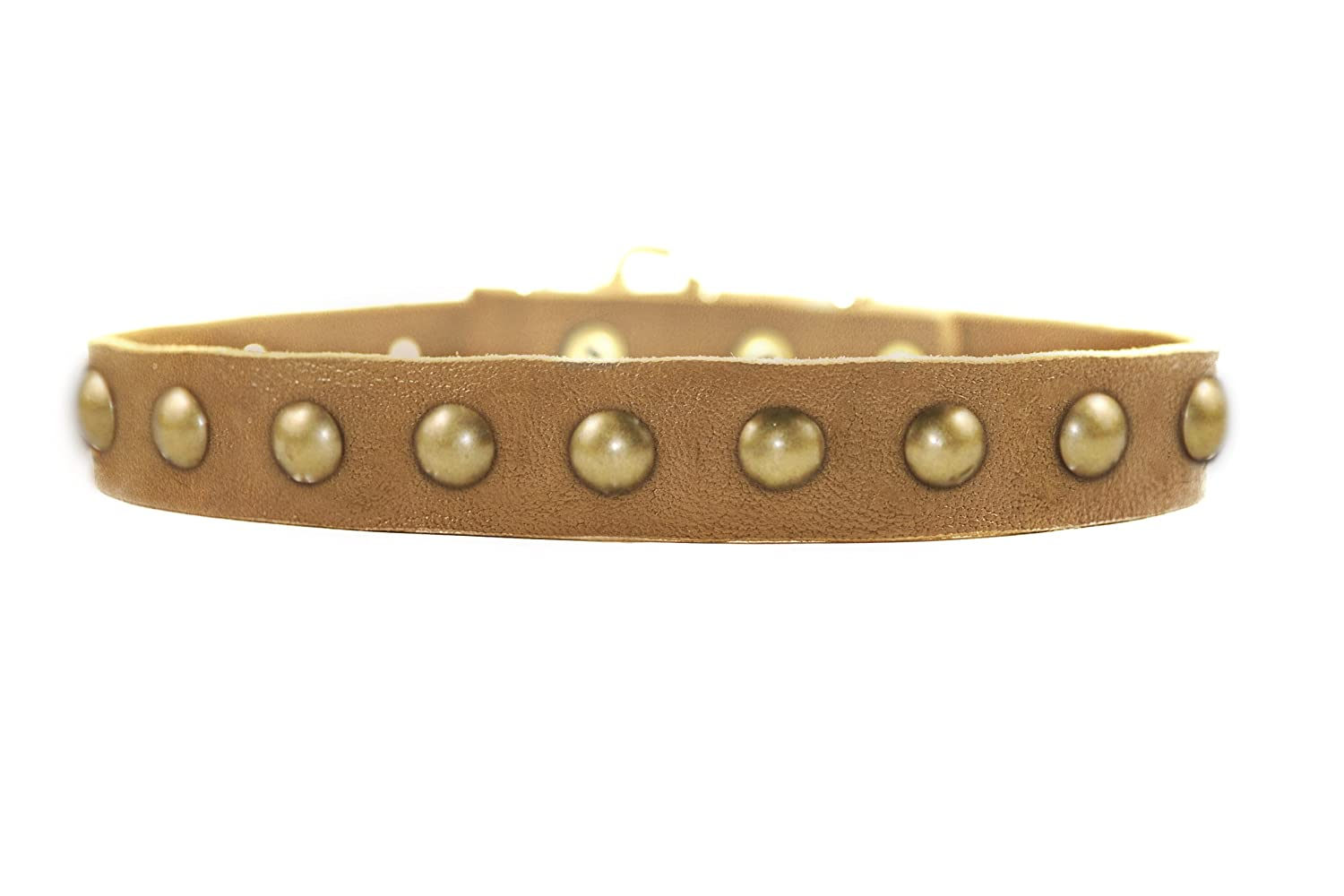 Dean and Tyler  DOG CIRCLE , Leather Dog Collar with Solid Brass Hardware Tan Size 18-Inch by 1-Inch Fits Neck 16-Inch to 20-Inch