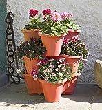 BAMA - Vaso TRIFOGLIO MAXY color Terracotta