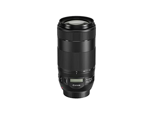 The 8 best canon 70 300mm lens sample photos