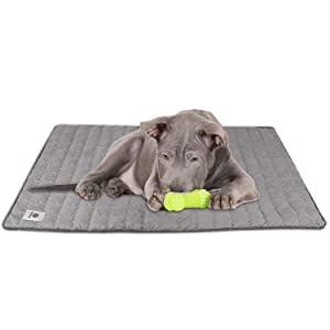 CheerMaker BreathTec Dog Pads Pet Car Seat Covers Training Pad Cat Litter Mat Doggy Mats Self Odor Eliminating Washable