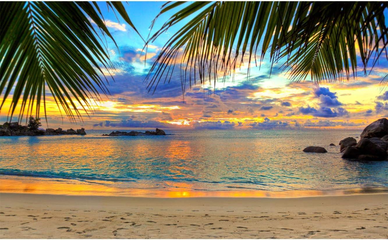 Oedim Vinilo para Frigor/ífico Anochecer en Playa Tropical 185x60cm Pegatina Adhesiva Decorativa de Dise/ño Elegante Adhesivo Resistente y Econ/ómico