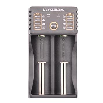LLYSCOLORS LII202 Cargador USB de Pilas inteligente , para batería recargable Ni-MH, Ni-Cd, AA, AAA, A, SC, 18650, 26650, 16340,14500, etc.