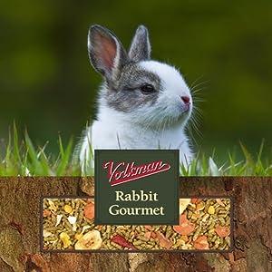 Volkman Small Animal Rabbit Gourmet 4lb