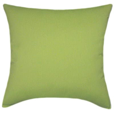 TPO Design Sunbrella Spectrum Kiwi Indoor/Outdoor Textured Square Pillow 16x16: Home & Kitchen