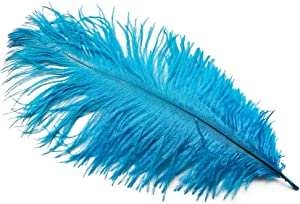 wanjin Ostrich Feathers 8-10inch(20-25cm) for Home Wedding Decoration DIY Craft Feathers per pack of 10 pcs(Turquoise)