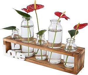 TQVAI Air Plant Terrarium Glass 5 Bottles with Wooden Stand Desktop Planter Vase Decoration - Love Style