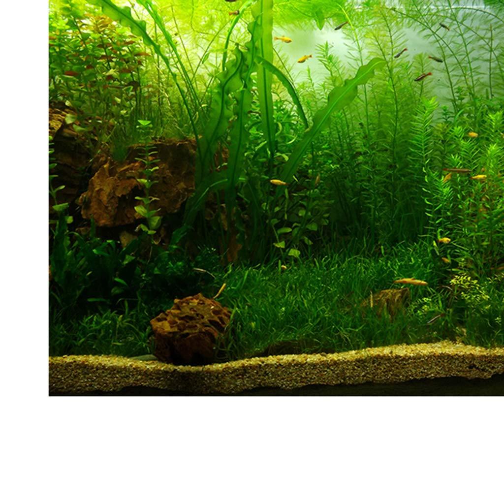 61x30cm Adesivi per Piante Acquatiche Poster Adesivo da Parete per Serbatoio di Pesce Come descritto B Blesiya Acquario Vivido Sfondo
