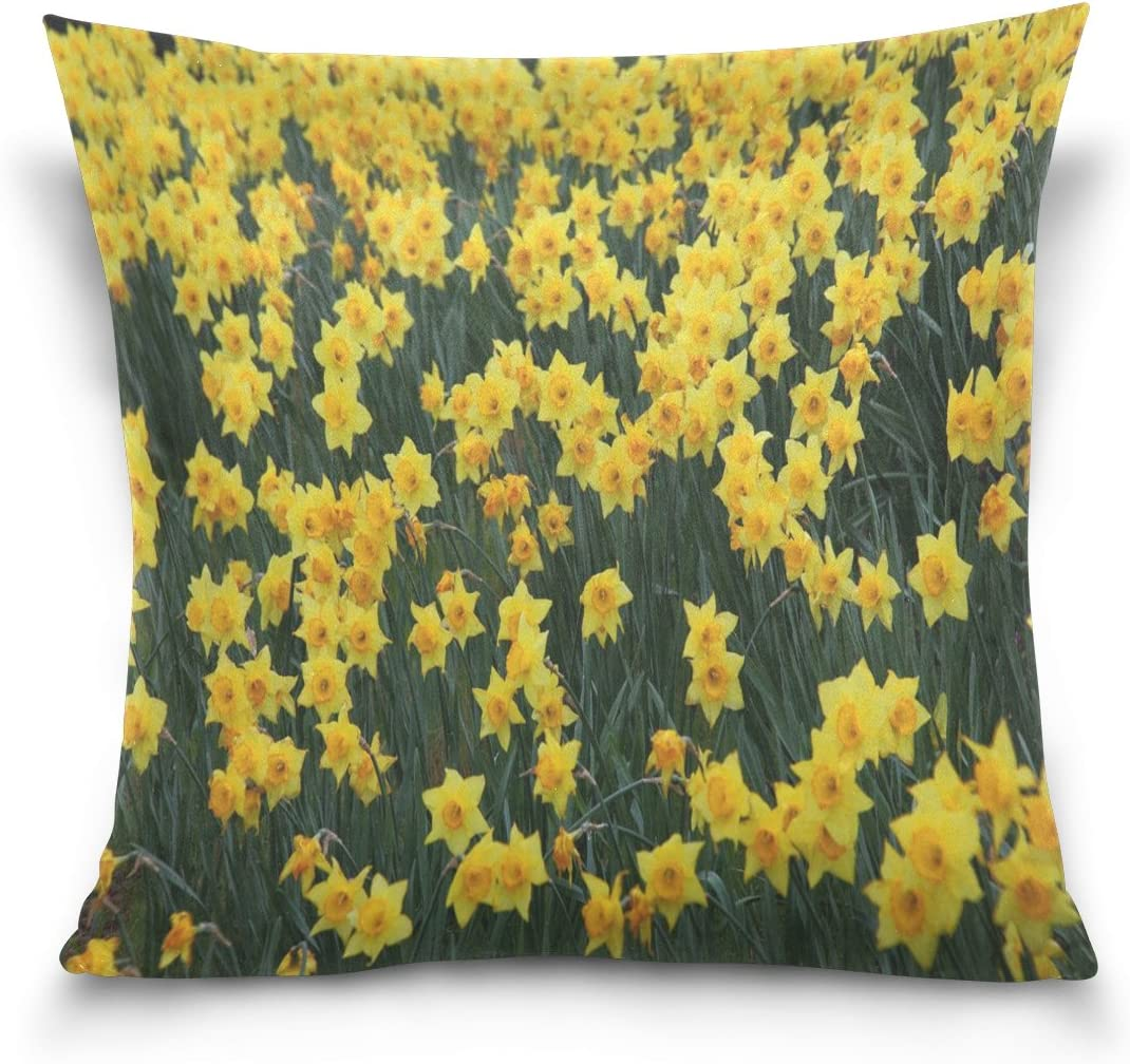 Amazon Com Ye Store Field Yellow Daffodil Flowers Cotton Throw Pillow Sofa Pillows For Bed And Car Without Inset Home Kitchen