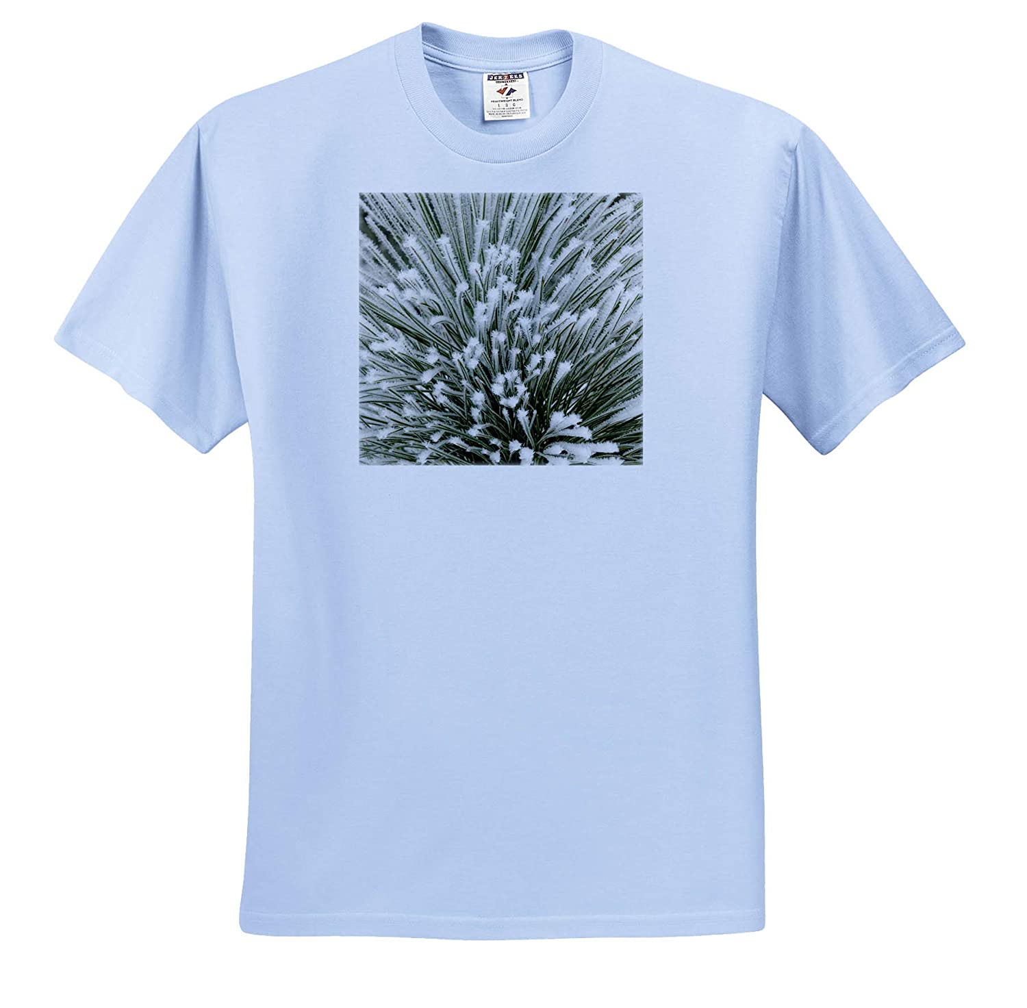 Adult T-Shirt XL ts/_314907 Winter Pine Bough with Heavy Frost Crystals 3dRose Danita Delimont Kalispell Montana