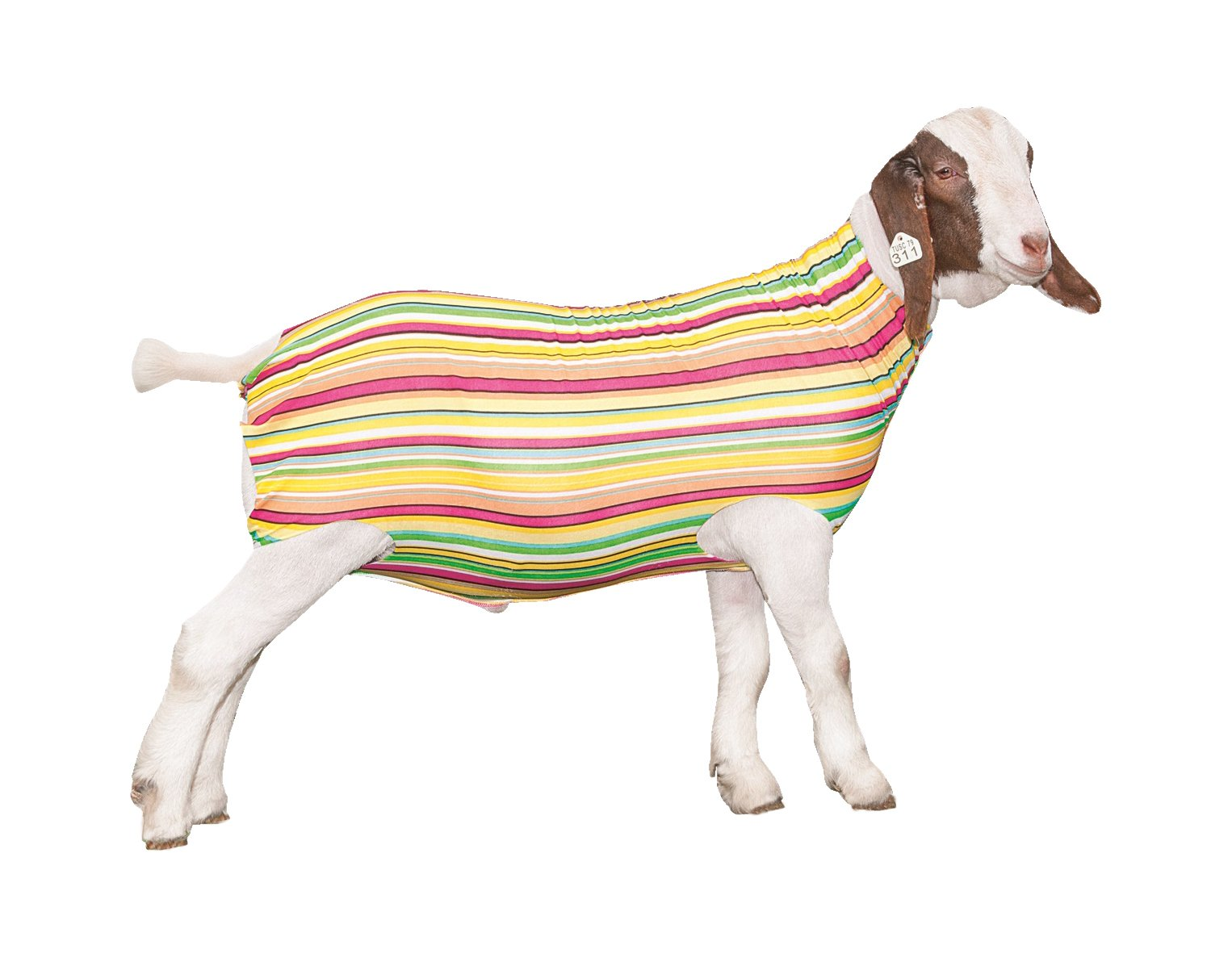Weaver Leather Livestock Patterned Spandex Goat Tube