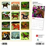 Arabians 2019 12 x 12 Inch Monthly Square Wall