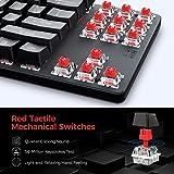 VicTsing Tenkeyless Mechanical Keyboard, Gaming