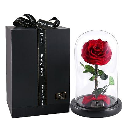 Rose Flowers Forever Flowers Glamorous Rose Glass Roses In Glass