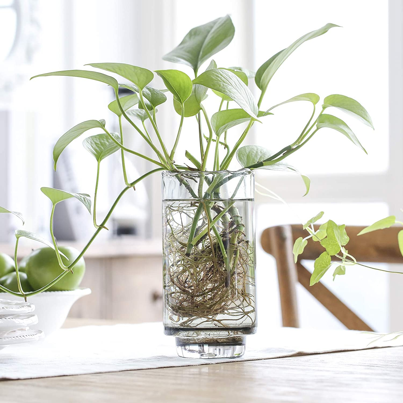 Glass Cylinder Vase Flamingo Cylinder Glass Vase Mother/'s Day Gift Housewarming Gift Birthday Gift