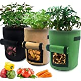 Nicheo 3 Pcs 10 Gallon Garden Boxes, Easy to Harvest, Planter Pot with Flap and Handles, Garden Planting Grow Bags for…