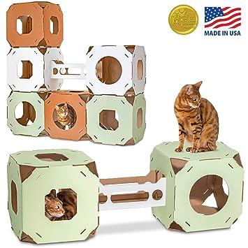 Amazon.com: Cat Amazing Stacks. - Condominio moderno para ...
