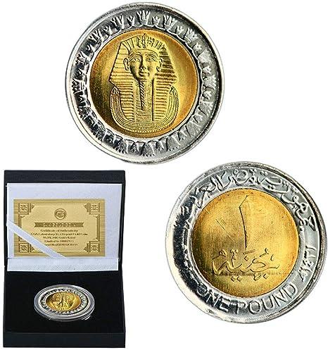 1989,2020,Piastras Oro,Monedas,Egipto,Tutankamón,Faraón,Pirámide,Hermoso,de Alta Calidad,Cajas de Regalo,Hermosa Regalo/A/L: Amazon.es: Bricolaje y herramientas