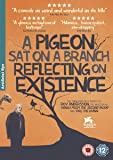 A Pigeon Sat on a Branch Reflecting on Existence [DVD]