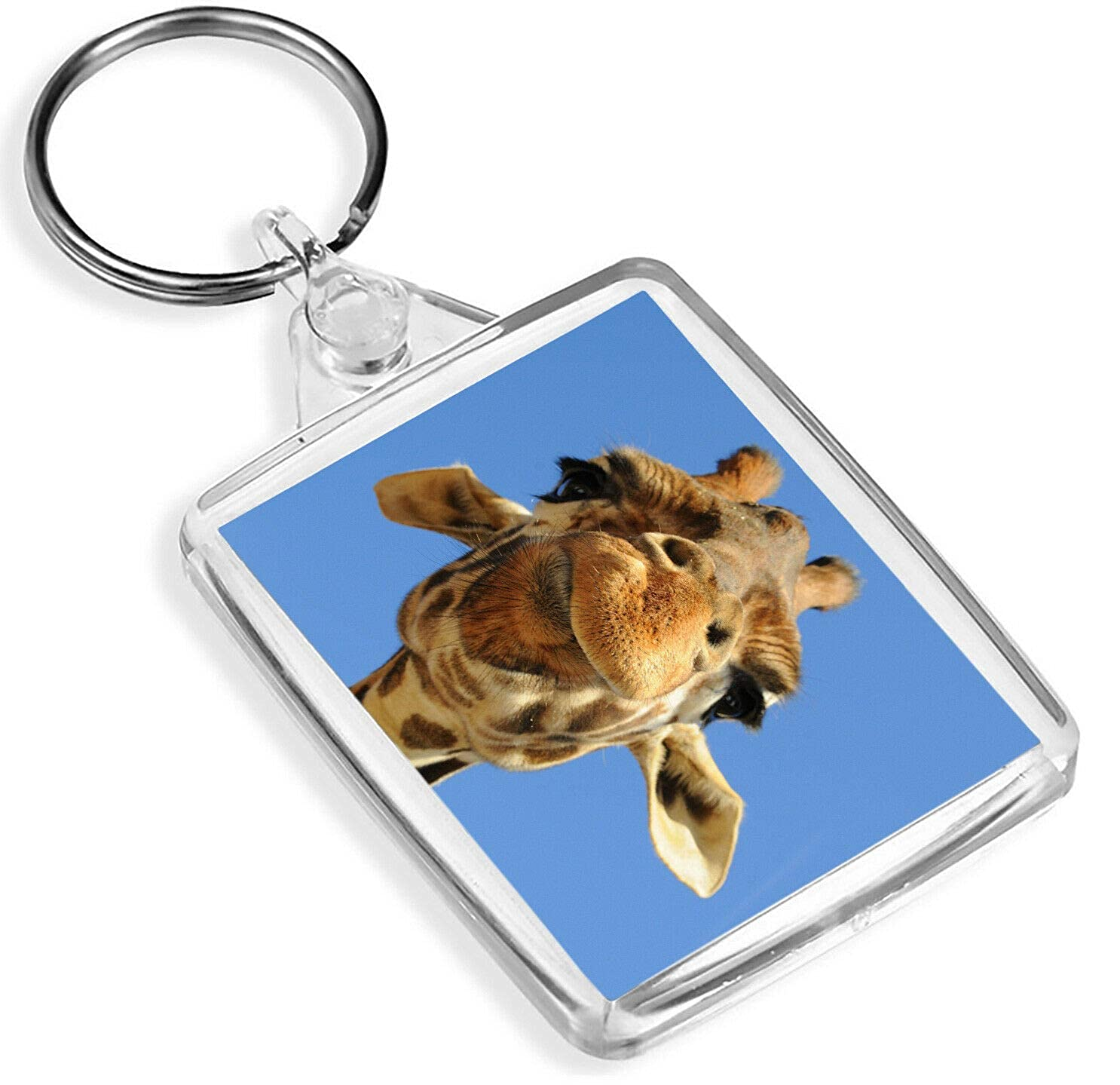Amazon.com: Silly Giraffe Keyring Africa African Safari ...