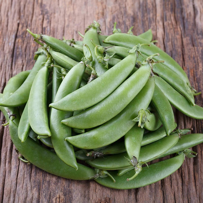 Organic Cascadia Peas 1/2 OZ ~50 Seeds - Organic Non-GMO Heirloom Open Pollinated - Farm & Garden Vegetable Gardening Seeds - Snap Peas